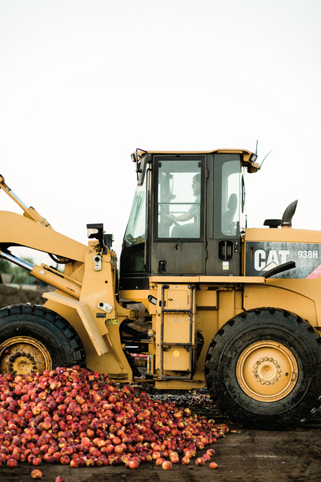 a large loader with a mound of peaches beside of it